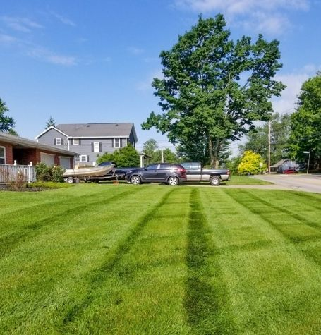A front lawn that has been recently mowed. All clippings have been cleaned up and there are visible mowing stripes in the grass.