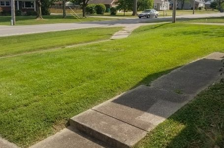 A residential lawn after a grass cutting service by ELCS. The grass has been neatly mowed and all clippings have been cleaned up.