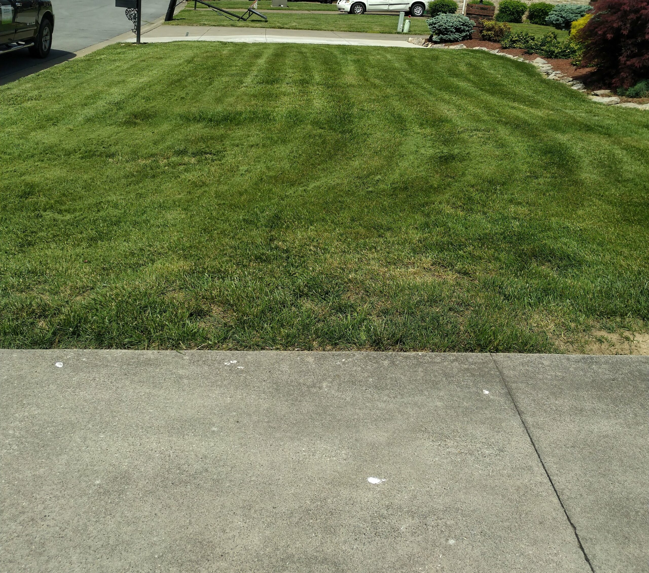 A small residential lawn that has been recently mowed by ELCS. The grass has been neatly cut and there are visible mowing stripes in the grass.